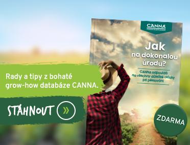 ebook Canna