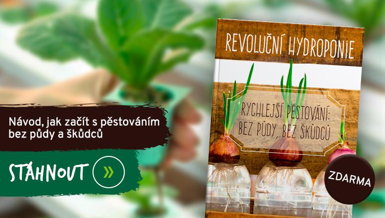 Kniha zdarma Revoluční hydroponie