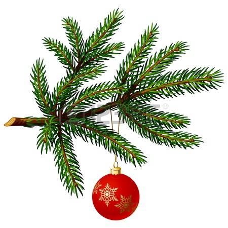 11465404-borovice-větev-s-vánoční-ples-na-bílém-pozadí.-vektorové-ilustrace