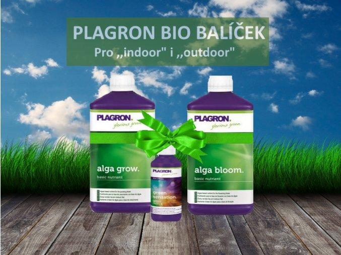plagron alga s masli