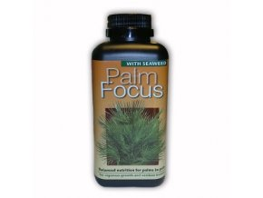 GT - Palm Focus 500ml