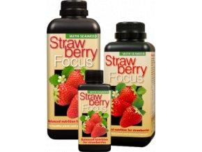 0005484 strawberry focus growth technology 300ml