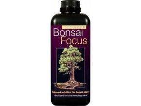 GT - Bonsai Focus 1l
