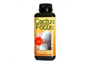 GT - Cactus Focus 500ml