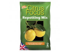 GT - Citrus Focus 2l