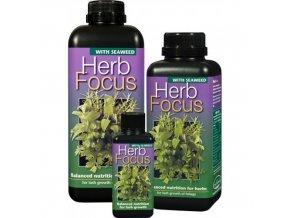 GT - Herb Focus