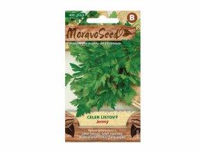 celer jemný listový