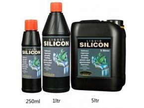 Silicon 1l