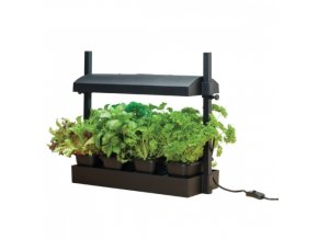 MICRO GROW LIGHT GARDEN