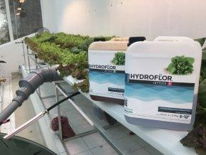 2924 hydroflor lettuce a b (1)