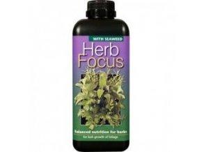 GT - Herb Focus 1l