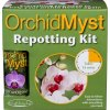 orchid repot