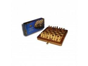 Cestovný šach