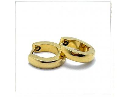 (O5341) Ocelové náušnice KROUŽKY Ø 10 MM, GOLD/zlatá barva