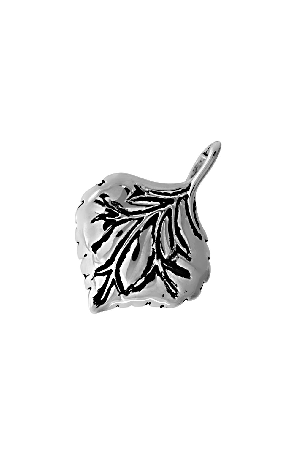 Skalimar Přívěsek z chirurgické oceli LIST 313563
