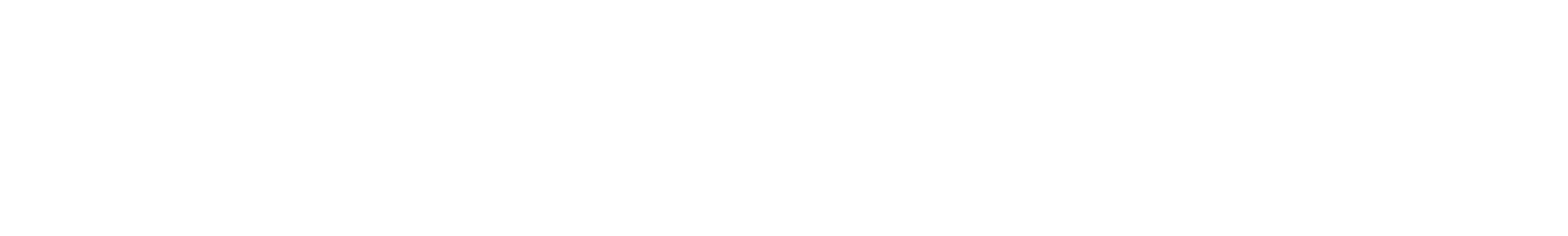 SPIELBERG BRNO ARMS s.r.o.