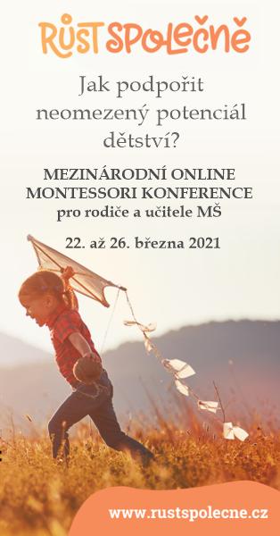 Montessori konference