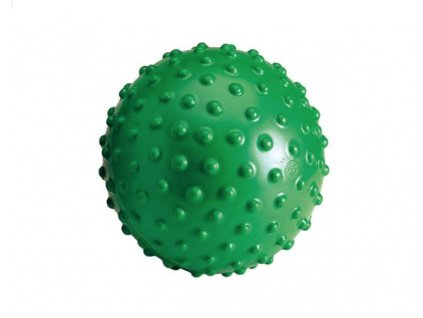 AKU BALL GYMNIC 20CM - LEDRAPLASTIC