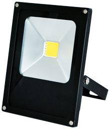 Greenlux LED reflektor DAISY MCOB 20W studená bílá (GXDS101)