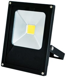 Greenlux LED reflektor DAISY MCOB 30W studená bílá (GXDS102)