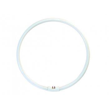 OPPLE YH 38W/4000 úsporná kruhová zářivka - studené bílé světlo