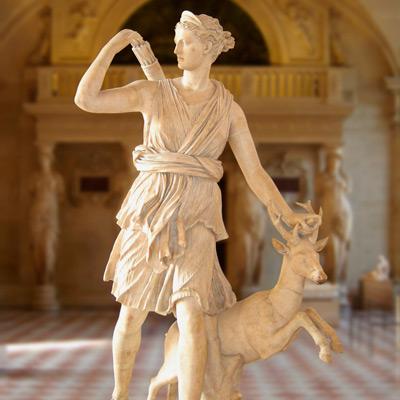 Už ve starověkém Římě znali blahodárné účinky mořských hub!