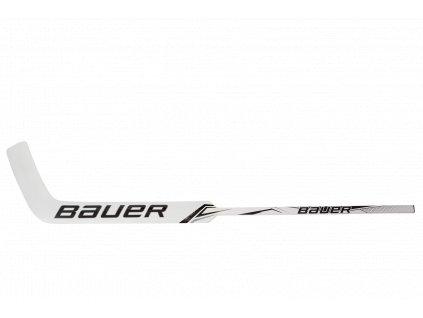 Hůl G. BAUER S20 GSX GOAL STK JR