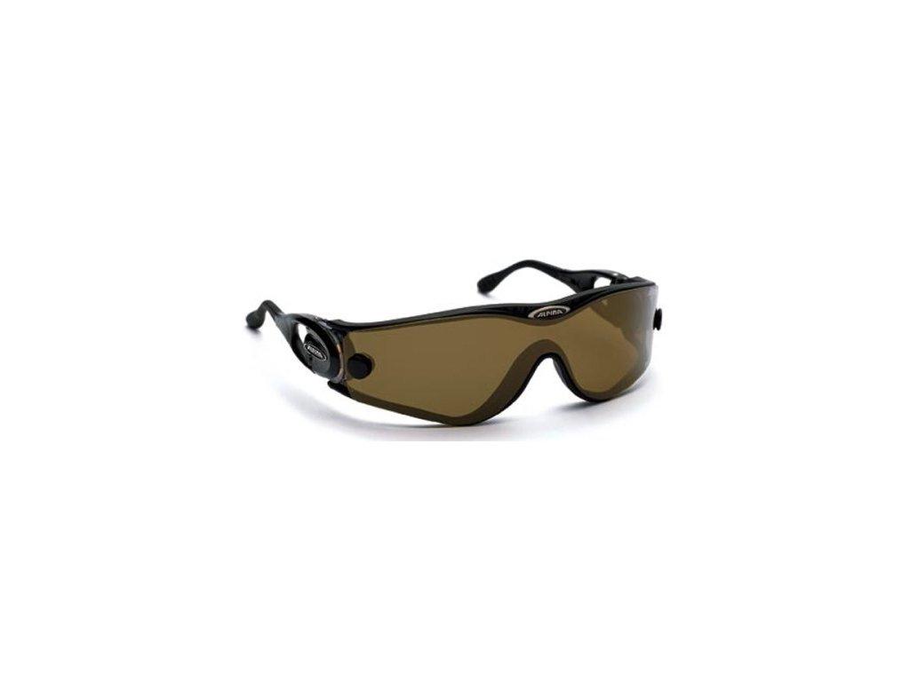 Brýle sluneční ALPINA SWING DF 30 DL černá