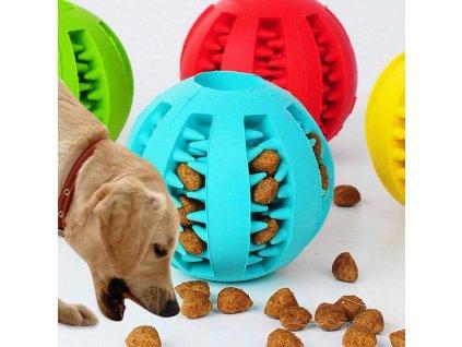 Žvýkací míček pro psy R211