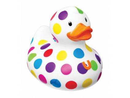 duck 11 500x500