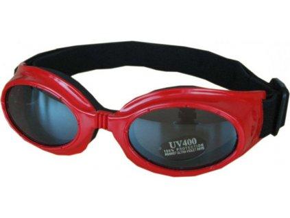 Lyžařské sluneční brýle Cortini SP35 junior