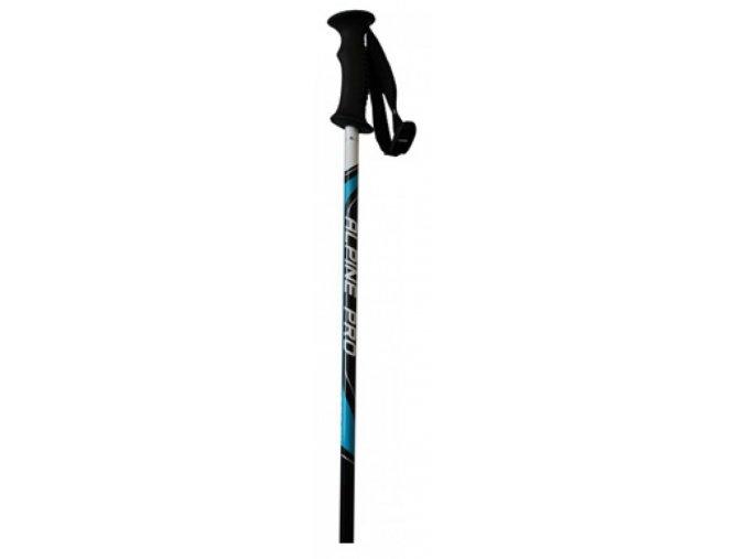 Juniorské lyžařské hole STUF  Alpin Pro  černá/modrá/bílá