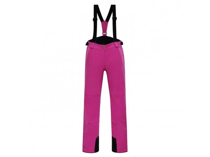 Dámské lyžařské kalhoty  Nexa  Lpah118411