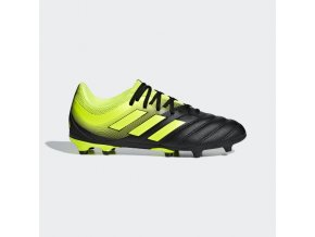 Juniorské kopačky adidas Copa 19.3 FG J D98080
