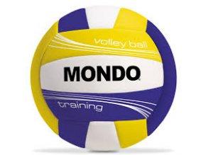 Míč volejbalový Mondo Vollley Training