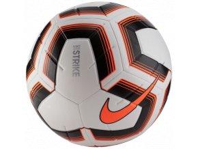 Nike STRK TEAM IMS SC3535 101