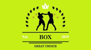 Lekce boxu
