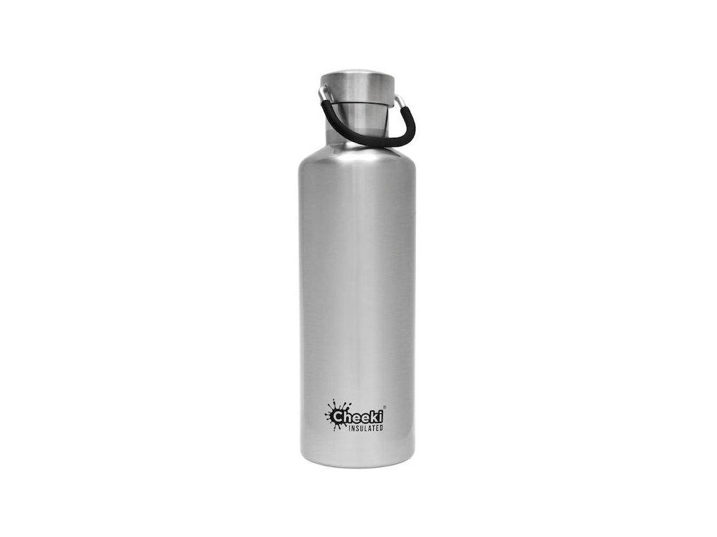 600ml Classic Insulated Bottle -Silver  Silver