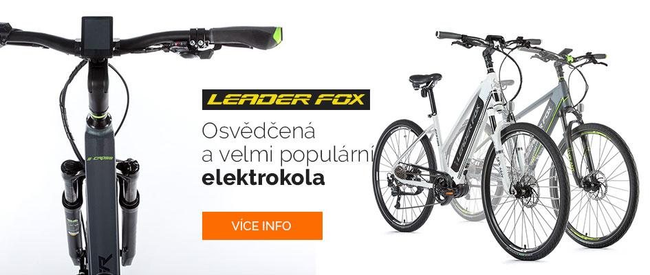 Leader Fox