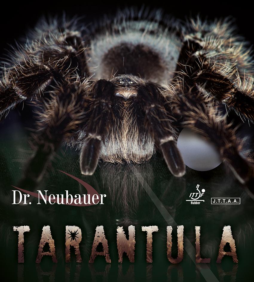 POZOR! Nebezpečná Tarantula útočí i na pingpongové míčky!