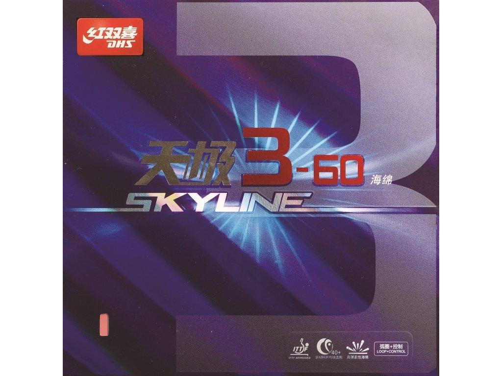 skyline3 601024x768(1)