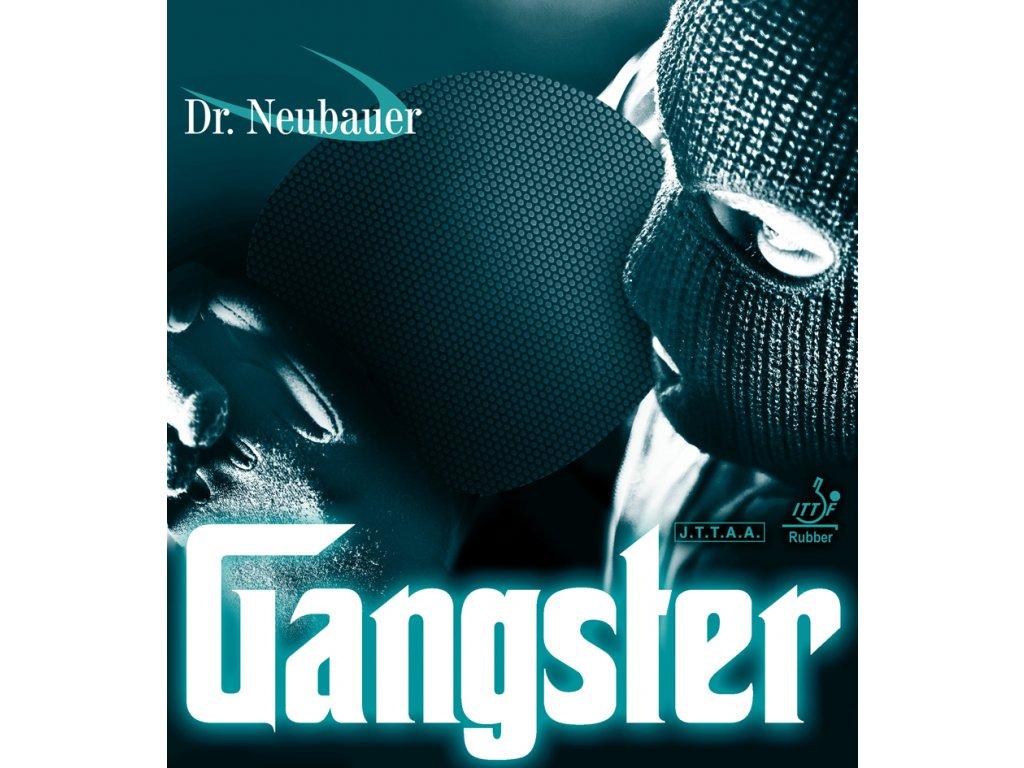 Potah Dr. NEUBAUER Gangster