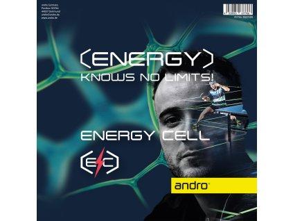13227200 Energy Cell FOIL