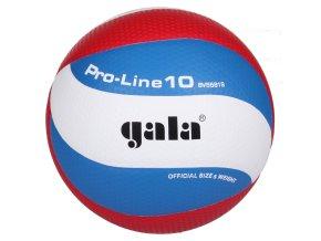 Gala Pro Line 10 BV5581S volejbalový míč