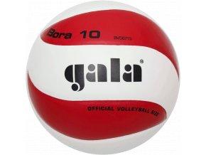 Gala Bora - 10 BV5671S volejbalový míč
