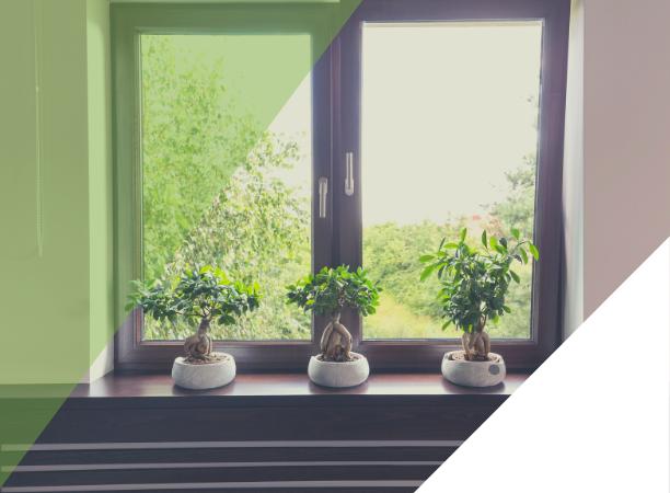 Jak se starat o plastová okna: praktický seznam na celý rok