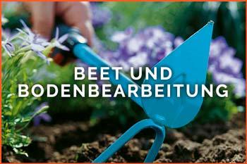 Beet und Bodenbearbeitung