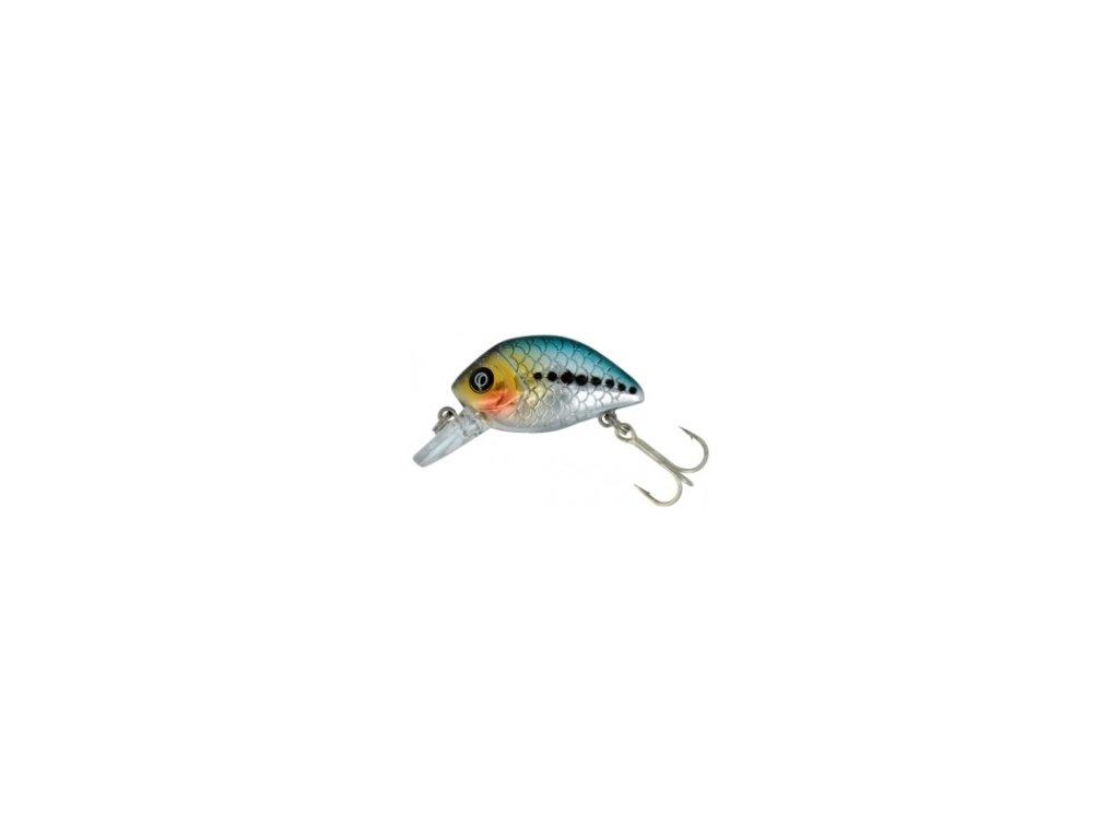 QUANTUM - Wobler Sardine 3,6cm/ 5g