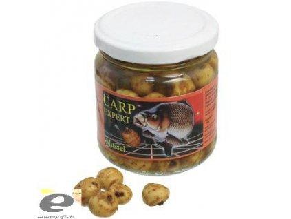 carp expert tygří ořech