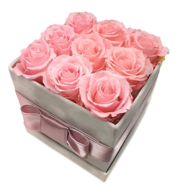 Stabilizovaná růže růžová